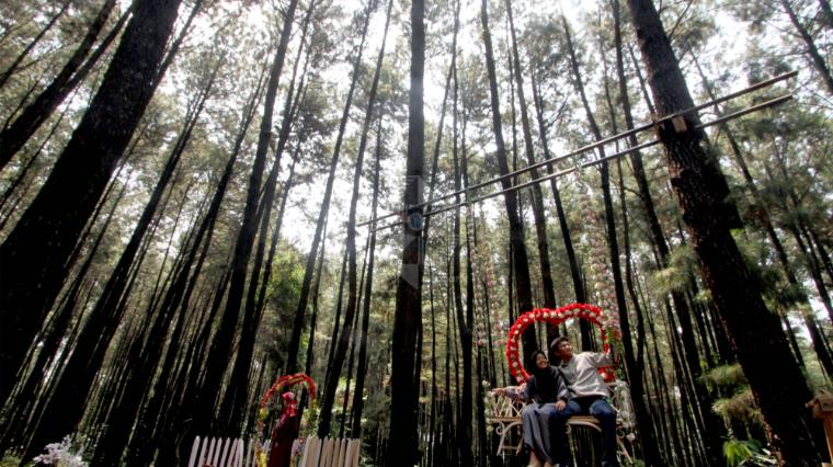 Pemkab Lampung Barat Tutup Tempat Wisata