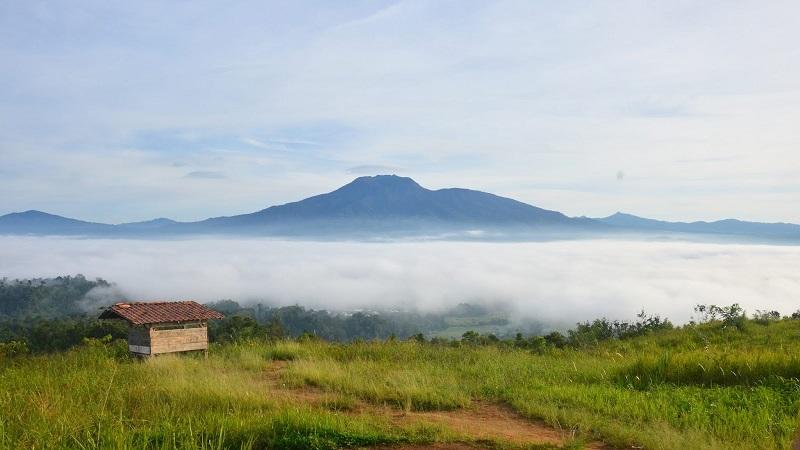 Bukit Kabut Bawang Bakung